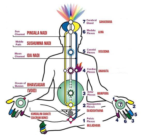 awaken kundalini chakra system