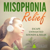 misophonia music white noise